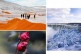 Аномальна зима-2018: сніг в Цукрі, -40 в Америці, завмерлий Ніагарський водоспад і квітучі троянди в Україні (ФОТО+ВІДЕО)