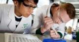 Вчені розробили паперовий тест для аналізу крові