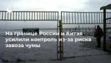 На кордоні Росії і Китаю посилили контроль з-за ризику завезення чуми